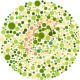 עיוורון צבעים או Color blindness